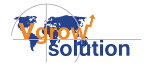 Vigrow Digital